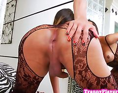 Lingerie tgirl rimmed before anal doggystyle