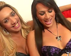 Hot tranny girl gets seduced