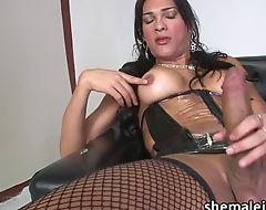 Latina shemale idol Jo Garcia jerks off her throbbing girl boner