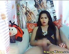 Cute Asian Tranny Jerking her Hard Dick