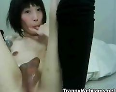 Asian TS cock jerking