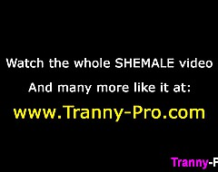 High heeled shemale gobbles dick