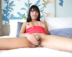 A cool assfucking solo show with busty Asian ladyboy Layla Easton